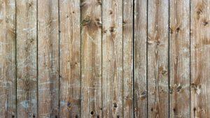 wood bg